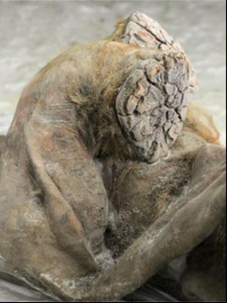 (w460) Mumia unui