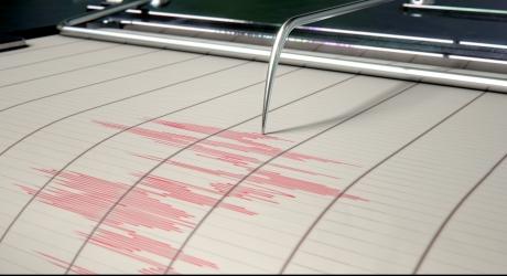 Locuitorii de pe Coasta de Vest a SUA vor putea primi avertizare timpurie la cutremur pe telefonul mobil