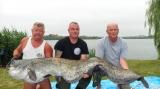"""Un somn de peste 50 de kilograme, captură-record în emisiunea """"Pescar hoinar"""" (TVR 2)"""