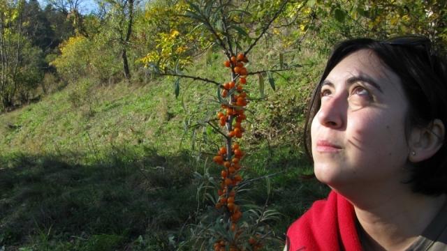 Iulia Vizi