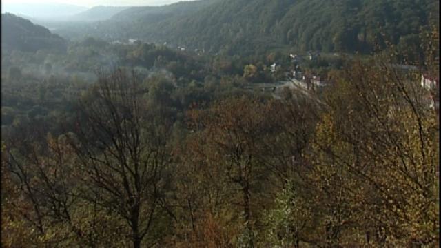 Valea Costeştiului