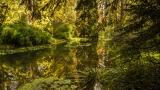 Arboretumul de la Simeria la