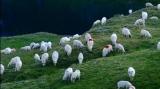 Romania turistica oite