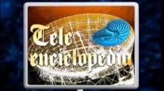 Teleenciclopedia – sumar 7 decembrie