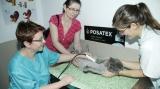 Poveşti de succes create de români, din grijă pentru animale
