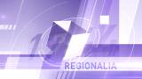 Regionalia din studioul TVR Iaşi