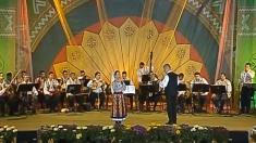 Festivalului Național de Folclor