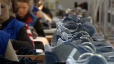 Economica: Fabrica de încălțăminte