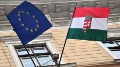 Româno-maghiarii merg la vot pentru parlamentarele din Ungaria