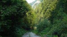 La pas prin Oltenia pe Defileul Jiului - Cheile Polatiştei