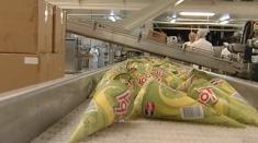 Fabrica de înghețată de la Cârcea