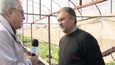 Sfaturi pentru legumicultori