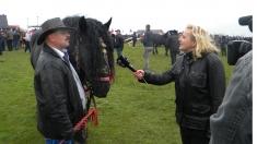 Viaţa la ţară: Caii de tracţiune – mândria bucovinenilor
