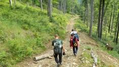 Traseu turistic: Casa de vânătoare Câmpușel - Pârâul Știrbu - Vârful Oslea