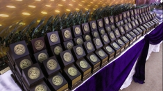 Gala Excelenţei în Afaceri – Topul Firmelor din judeţul Timiş 2013