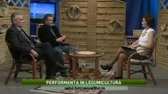 Satul: performanțe în legumicultură