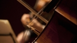 concert camera muzica clasica