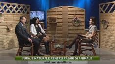 Satul: Furaje naturale pentru pasari si animale