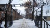 În direct de la Auschwitz, comemorarea a 70 de ani de la eliberarea lagărului