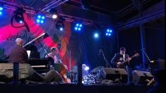 Recitalul Ulf Wakenius Band la Festivalul de Jazz de la Gărâna 2014