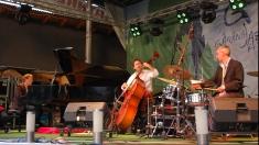Recitalul Pedro Negrescu Trio la Festivalul de Jazz de la Gărâna 2014