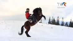 Drumeție pe munte în șaua cailor
