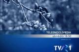 Teleenciclopedia