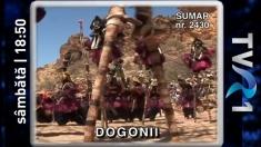 Dogonii, unul dintre cele mai vechi popoare africane, la Teleenciclopedia