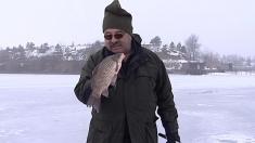 Duminică pescuim la copcă, pe gheața lacului Tâncăbești