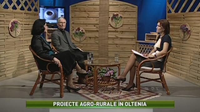 Satul - TVR Craiova