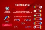 Meciuri Nationala 2015