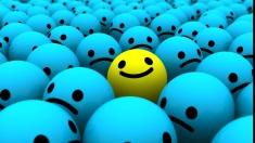 RIALITI ŞOC în căutarea fericirii!