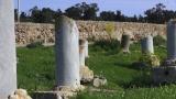 Tunisa Cap compas