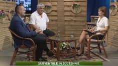 Satul: Subvențiile în zootehnie