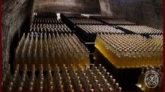 Drumul vinului moldovenesc, la TVR Internaţional