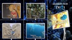 Noi pagini de istorie şi biologie, la Teleenciclopedia