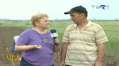 Viaţa satului, prima în topul programelor TVR 1 din acest weekend