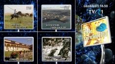 Insula Dyer din Africa şi caii andaluzi, la Teleenciclopedia