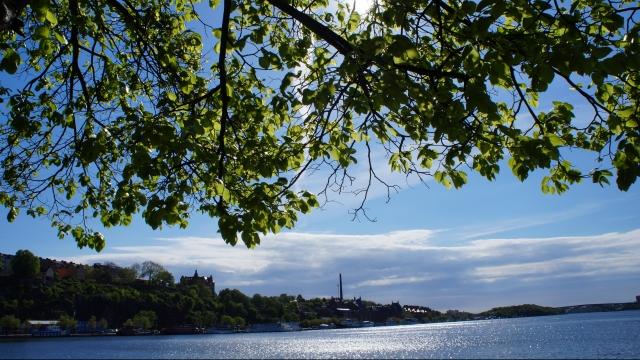 Cap compas Stockholm 2
