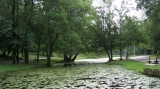 Parcul Romanescu din Craiova