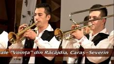 Festivalul Fanfarelor de la Timişoara, ediţia a II-a