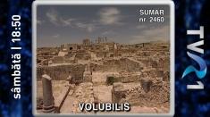 Secretele oraşului Volubilis, între lecţiile Teleenciclopediei