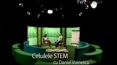 Recoltarea de celule stem: o necesitate sau marketing?
