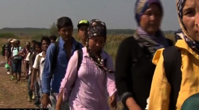 Imigranti la Dosar Romania