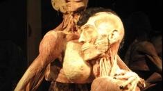 """""""Our body"""" sau controversele unei expoziţii"""