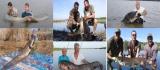 Pescar hoinar - Somnmania 2016