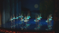 """""""Șobolanul rege"""" și """"Regele baletului"""", în premieră la """"Cap de afiș"""""""