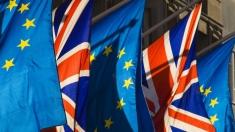 Articolul VII: Schimbări în migraţia şi dezvoltarea din UE, după BREXIT