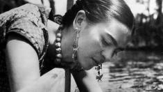 Teleenciclopedia: de la Civilizaţia Maya la mişcările feministe