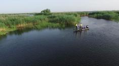 """""""Pescar hoinar"""" merge în căutarea celor mai mari răpitori din Delta Dunării"""